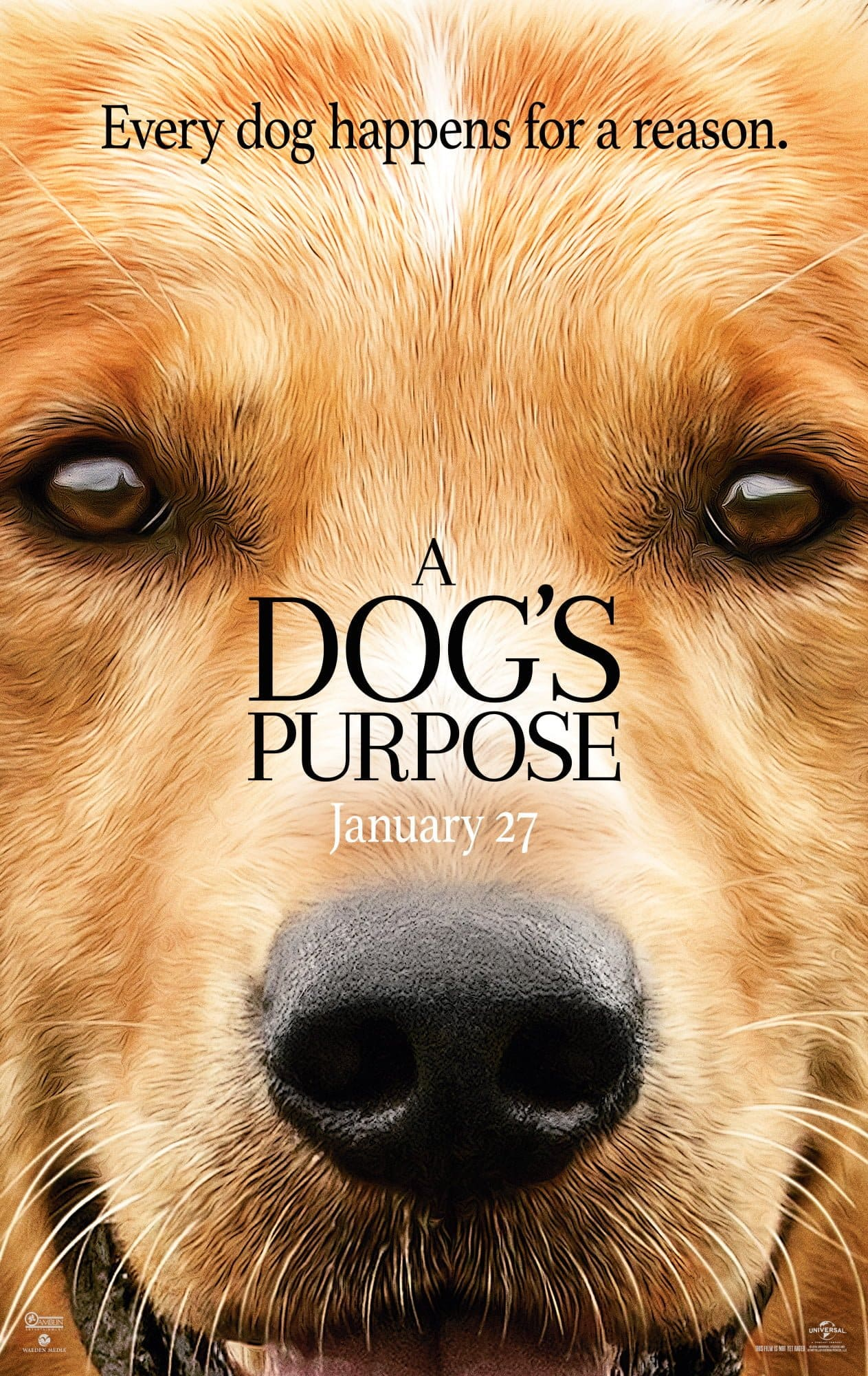 Every Dog Happens for a Reason A Dog's Purpose